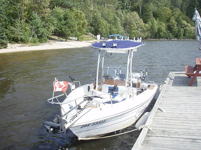 T top for 1990 Grew - 19ft boats 34595-3