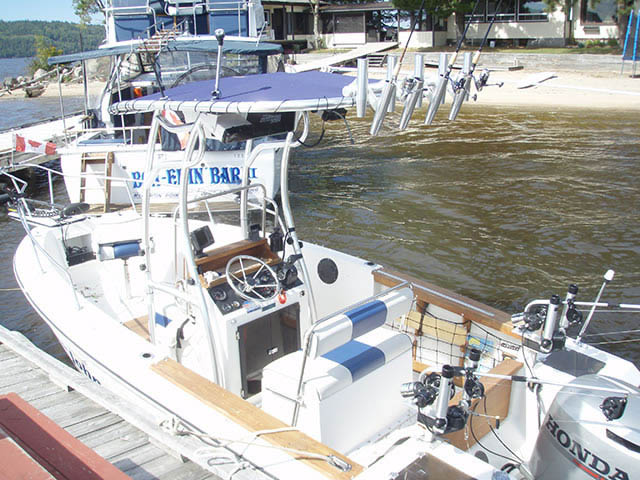 T top for 1990 Grew - 19ft boats 34595-4